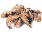 Photo Crevettes grises - LE CARRE SAINT MICHEL